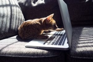 Modern weboldal kikészítés